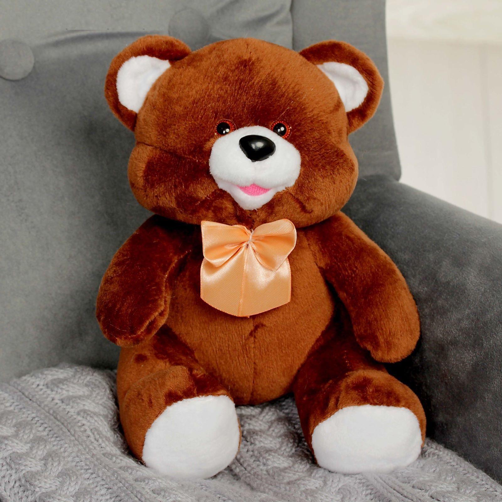 услугам гостей мягкая игрушка медведь фото суп отлично утоляет