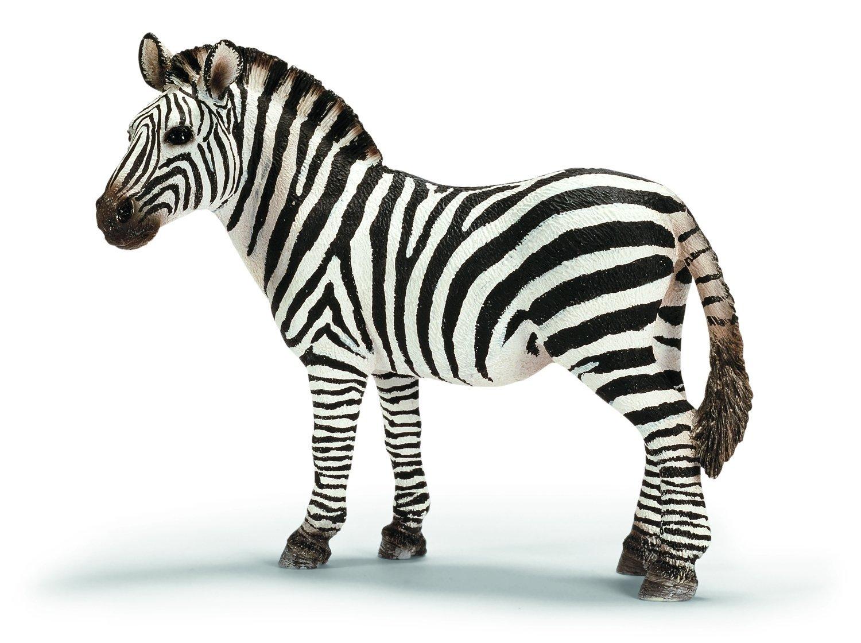 Свекрови, картинка зебра для детей