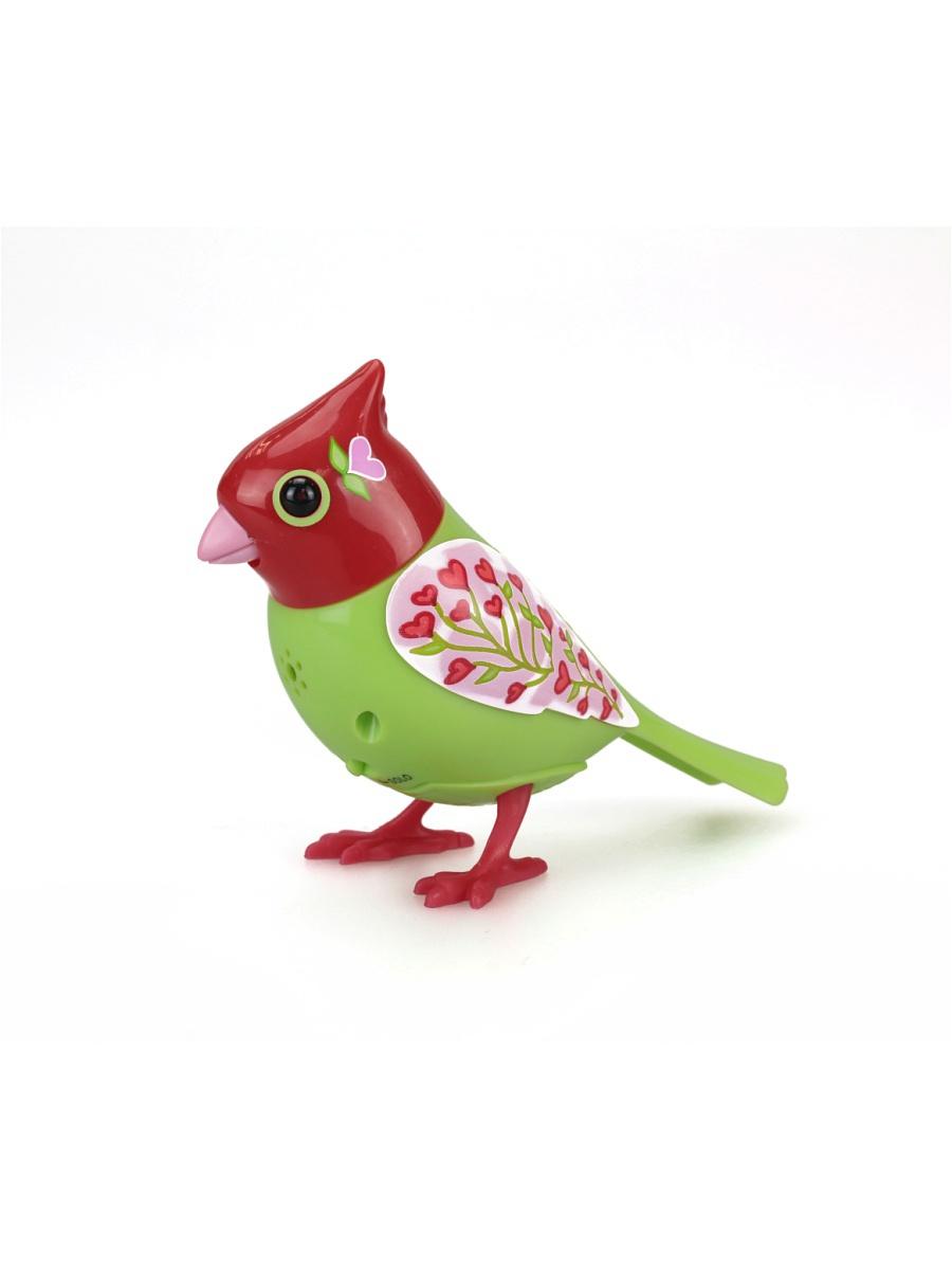картинки игрушечных птиц запах