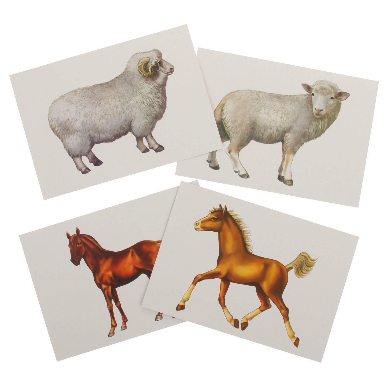 Вацап, картинки животные и их детеныши
